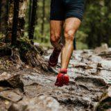 trening wzmacniający nogi