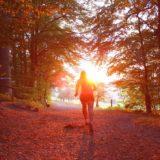 w czym biegać jesienią