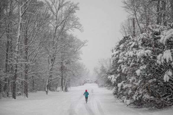 buty do biegania zimą