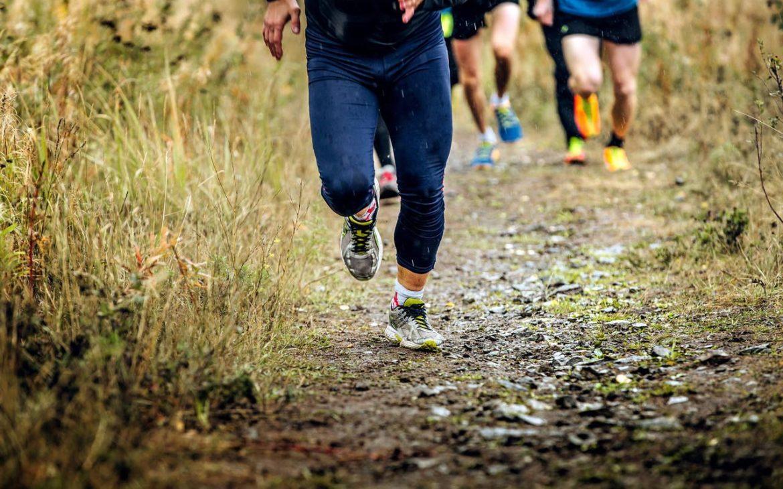 buty do biegania po górach