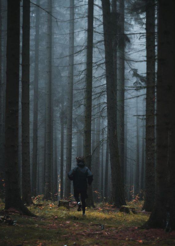 bieganie w lesie