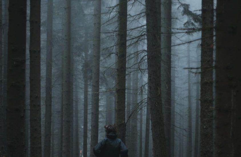 Bieganie w lesie – czy warto?