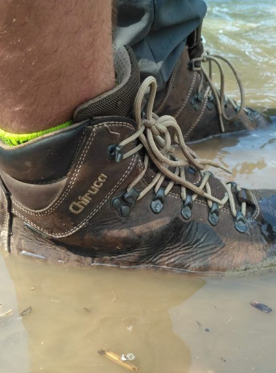 buty turystyczne salomon