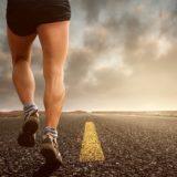 Budowa mięśni nóg. Jakie są funkcje mięśni kończyny dolnej?