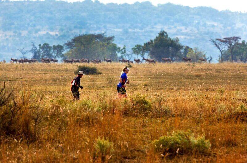 ciekawy event dla biegaczy maraton na safari